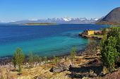 stock photo of olden days  - Coast of Lofoten islands Norway with fjord - JPG