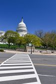 The Capitol in Spring - Washington D.C. United States