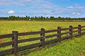 The equal grassy farmer field fenced with a low wooden fence