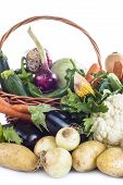 image of escarole  - A basket with assortment of vegetables isolated on a white background - JPG