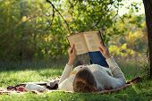 stock photo of knitwear  - lying woman reading a book during a relax in the park - JPG
