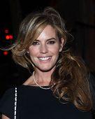 LOS ANGELES - SEP 13:  Sandra Taylor arrives to Brent Shapiro Foundation Summer Spectacular 2014  on September 13, 2014 in Los Angeles, CA