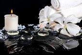 Cryogenic Spa Still Life Of Delicate White Hibiscus, Zen Stones With Drops, Snow, Ice, Candles And T