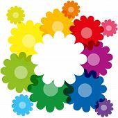 Rainbow Colored Flowers
