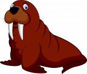 stock photo of blubber  - Vector illustration of Cartoon walrus isolated on white - JPG
