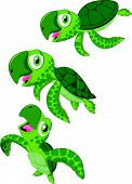 picture of terrapin turtle  - illustration of Cartoon sea turtle isolated on white vector - JPG
