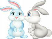 Cute rabbit kissing vector