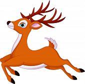 cartoon deer running vector