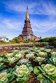Pagoda In An Inthanon Mountain, Doi Inthanon Nation Park,thailand.