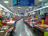 Inside Jagalchi Fish Market Busan