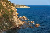 Coast On Elba Island