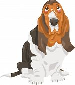 Basset Hound Dog Cartoon Illustration