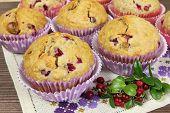 Homemade Muffins