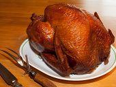 Succulent Turkey
