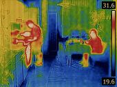 Body Heat Distribution Thermal Image