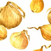 Seamless pattern with watercolor drawing onions