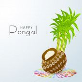 South Indian harvesting festival, Happy Pongal celebrations with rice in traditional mud pot and sugarcane on colorful rangoli decorated blue background.