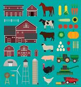 picture of water cabbage  - Farm and agriculture infographic set with animals and tractors - JPG