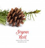 Joyeux noel against brown pine cone with fir branch