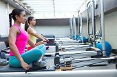 stock photo of pilates  - Pilates reformer workout exercises women at gym indoor - JPG