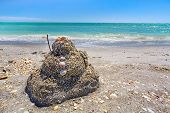 pic of gulf mexico  - A child - JPG