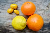 stock photo of kumquat  - Set of citrus fruits from tangerines - JPG