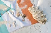 stock photo of clam  - giant clam and other seashells on a beach towel on white plank - JPG