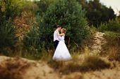 pic of greek-island  - portrait of a bride and groom in a greek island on their wedding day - JPG