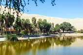 foto of oasis  - Oasis of Huacachina Peru with sand dunes in the background - JPG
