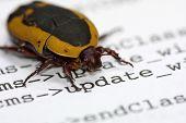 A Computer Bug