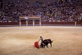 MADRID - AUGUST 8: The torero Juan Pablo Sanchez fights a bull named Calabaza in the Las Ventas bull
