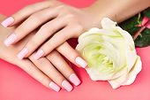 Manicured Nails With Pink Nail Polish. Manicure With Nailpolish. Fashion Art Manicure, Shiny Gel Lac poster