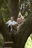 brother and sister climbing in huge oak tree
