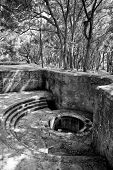 picture of emplacements  - abandoned gun emplacement in the forest - JPG