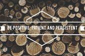 Positive Patient Persistent Optimistic Mindset poster