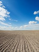 ploughed field under blue sky