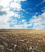 black ploughed field under blue cloudy sky after harvesting