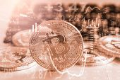 Bitcoin Business. Crypto Currency Gold Bitcoin. New Way Of Business Bitcoin Currency Is Payment In G poster