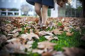 Child Girl Walking Over Fallen Leaves Carpet At Park. Autumn And Kids Concept poster