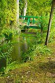Bridge in Monet's Garden