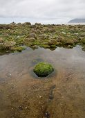 pic of land-mass  - A tidepool on the ocean shore with a single green rock in its center land mass on the distant horizon and stormy clouds above - JPG