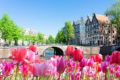 Historical Houses Of Amsterdam Over Canal Ring Landmark In Old European Citye, Holand Netherlands. A poster