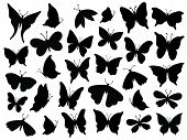 Papillon Silhouette. Mariposa Butterfly Wing, Moth Wings Silhouettes And Spring Flower Butterflies I poster