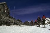 Skiers With Packs Approaching Britannia Mountain Hut