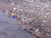 stock photo of polution  - litter collects at the edge of the river plate - JPG