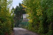 picture of novosibirsk  - autumn landscape on the way to the cottage - JPG
