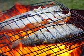 Fish on the grill. Healthy food with omega 3 unsaturated fatty acid.  Close up with shallow DOF.