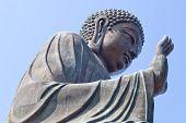 Buddha statue sitting in