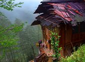 Peasant House With A Wet Roof, Standing On The Brink Of The Abyss, With Bamboo Groves