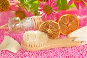 Bathing Brush And Gel With Echinacea